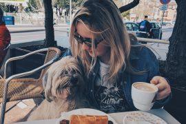 Dogs in Reastaurants
